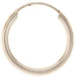 Stud hoop earing