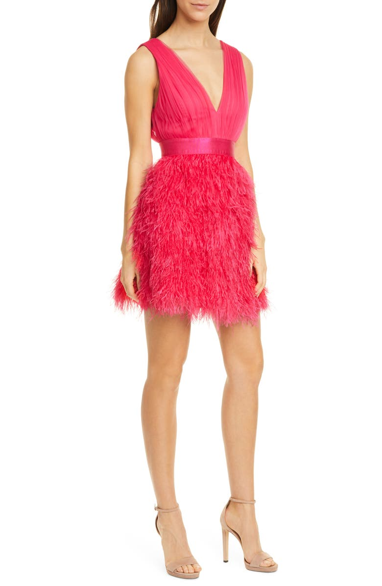 The embroidered pink feather dress